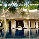 tuviajeadomicilio-hotel-banyan-tree-madivaru-10