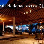 tuviajeadomicilio-hotel-park hyatt-04