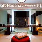 tuviajeadomicilio-hotel-park hyatt-17