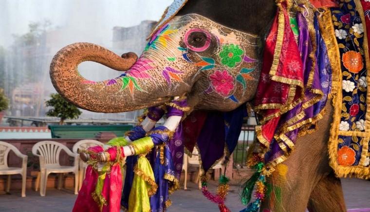 india-tours-jaipur-gangaur-festival.jpg.1340x0_default (Copiar)